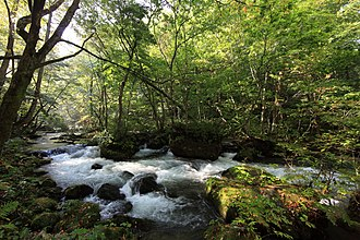 Towada-Hachimantai National Park - Oirase River