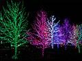 Oklahoma City Christmas Lights - panoramio - MARELBU (11).jpg