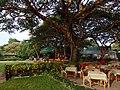 Old Bagan, Myanmar (Burma) - panoramio (9).jpg
