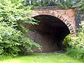 Old Railway Bridge, Pleasley - geograph.org.uk - 468592.jpg