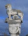 Old lion.jpg