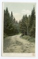 On the Road from Crawfords to Bretton Woods, White Mountains, N. H (NYPL b12647398-68916).tiff