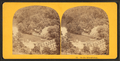 On the Wissahickon, from Robert N. Dennis collection of stereoscopic views.png