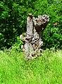 Once a proud tree - Flickr - Stiller Beobachter.jpg