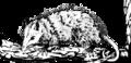 Opossum (PSF).png
