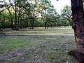 Ormanlık Alan... - panoramio.jpg