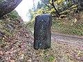 Oshimaku Shobu, Joetsu, Niigata Prefecture 942-1216, Japan - panoramio.jpg