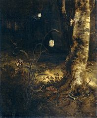 A forest floor with a snake, lizards, butterflies and other insects