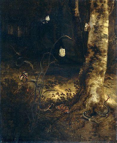 L'art et le papillon  dans PAPILLON 393px-Otto_Marseus_van_Schrieck_-_Bosgrond_met_een_slang%2C_hagedissen%2C_vlinders_en_andere_insecten%2C_ca_1650-1678
