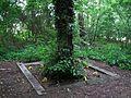 Owczeglowy, ev. cemetery.jpg