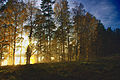 Päikeseloojang Uljaste oosil.jpg