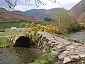 Packhorse bridge at Wasdale Head, Pillar in the background - geograph.org.uk - 785367.jpg