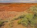 Painted Desert Arizona12.jpg