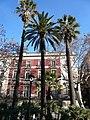 Palmeres plaça de Medinacel·li.jpg