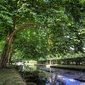 Parc du Chateau de Courances (28234032110).jpg