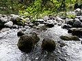 Parque Nacional Saltos Petrohue.jpg