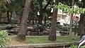 Parque de las tortugas.jpg