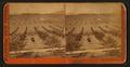 Pasadena, Los Angeles County, Cal. View from Lake Vineyard House, by Watkins, Carleton E., 1829-1916.png