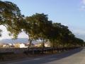 Paseo de la Constitución, en Peñuelas.png