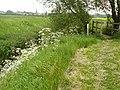 Path by Fairham Brook Bunny - geograph.org.uk - 1335666.jpg