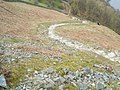 Path down Loughrigg - geograph.org.uk - 766440.jpg