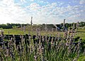 Peaceful Acres Lavender Farm, Earthship and Wellness center - panoramio.jpg