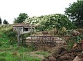 Peasbury Hill, Ottringham - geograph.org.uk - 216360.jpg