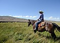 Petes creek ranch.jpg