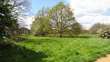 Pevensey Road Nature Reserve 3.JPG
