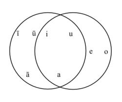 Phonology - Wikipedia