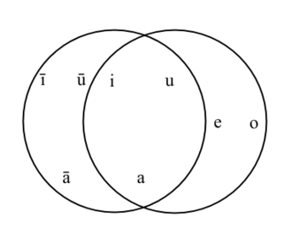 Phonology - The vowels of modern (Standard) Arabic and (Israeli) Hebrew from the phonemic point of view. Note the intersection of the two circles—the distinction between short a, i and u is made by both speakers, but Arabic lacks the mid articulation of short vowels, while Hebrew lacks the distinction of vowel length.