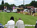 Pig Racing in the Show Ring, Hearing Dogs Summer Fayre, 2009 - geograph.org.uk - 1344298.jpg