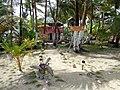 Pink Pearl Island-8.jpg