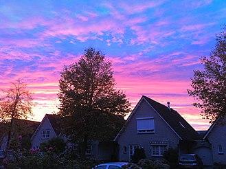 Atmospheric optics - Pink/purple sky in Nieuw-Vennep