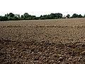 Ploughed field near Calthorpe - geograph.org.uk - 538426.jpg