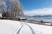 Poertschach Johannaweg winterlicher Park mit Reifenspuren 14012017 6067.jpg