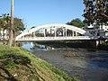 Ponte Carlos Otto em Juiz de Fora.jpg