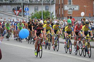 2014 Danmark Rundt cycling race