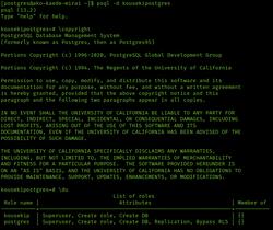 PostgreSQL 13.2 screenshot.png