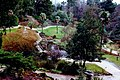 Powerscourt Gardens - Japanese Gardens - geograph.org.uk - 1618352.jpg