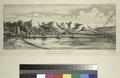 Presqu'île de banks, pointe dite des Charbonniers, à Akaroa, pêche à la seine (NYPL b13493718-1105575).tiff