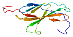 Protein EPHB1 PDB 2djs.png