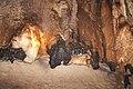 Puerto Princesa Subterranean River Cave, Ceiling, Palawan, Philippines.jpg
