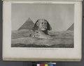 Pyramides de Memphis. Vue du Sphinx et de la seconde pyramide, prise du levant (NYPL b14212718-1268180).tiff