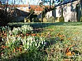 Quaker Graveyard, Great Ayton - geograph.org.uk - 124281.jpg