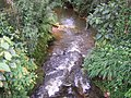 Quebrada Santa Elena-corregimiento.JPG