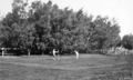 Queensland State Archives 322 Bargara Golf Club Bargara c 1931.png