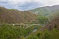 Río Moraca, norte de Podgorica, Montenegro, 2014-04-14, DD 20.JPG