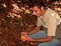 Raccolta Funghi Sila - panoramio.jpg