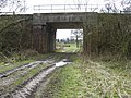Railbridge over footpath - geograph.org.uk - 1773398.jpg